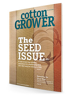Cotton Grower | November 2019