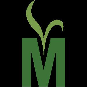 Meister Media
