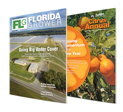 Florida Grower Markets